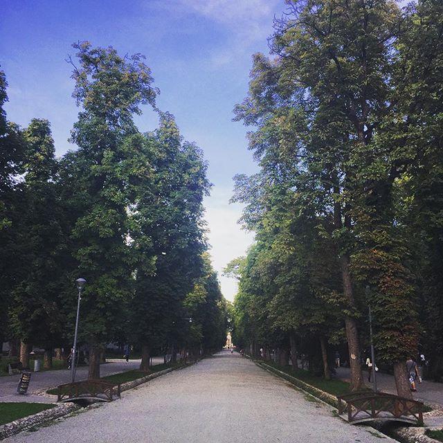 parcul central cluj napoca